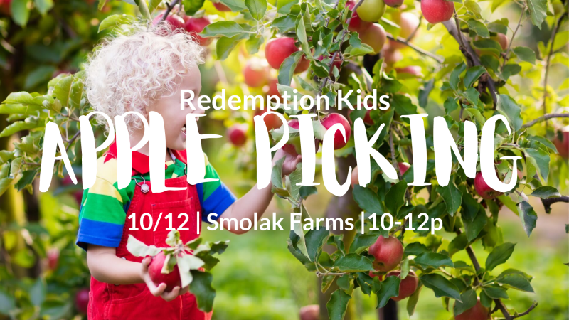 RK Apple Picking